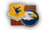 18th Wing Custom Plaque