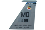 390 FS F-15C Tail Flash