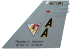 CVW-17 F/A-18C/D Tail Flash